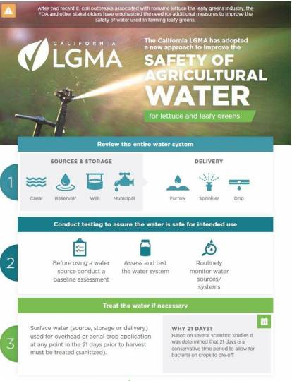 infographic on new water standards for leafy greens farming